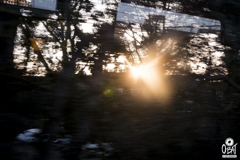 trein terug naar Groningen